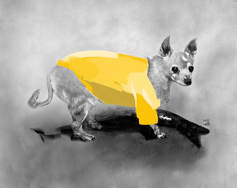 My old DogFeb062019_sm.jpg